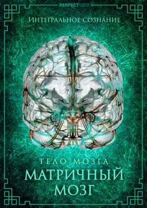 Матричный мозг. Интегральное сознание