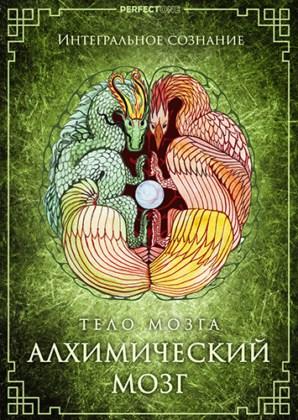 Искусство развития совершенного тела. Методологическая программа: Тело мозга. Алхимический мозг