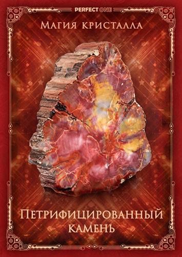 Петрифицированный камень