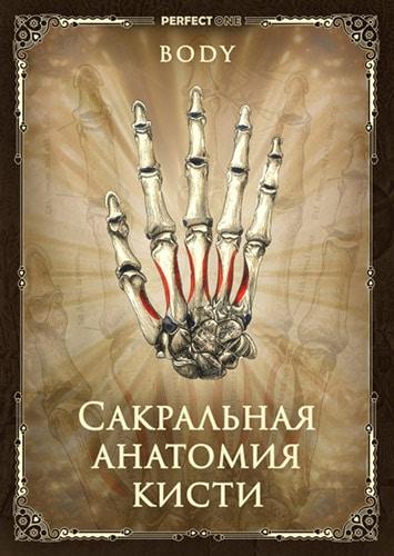 Сакральная анатомия кистей
