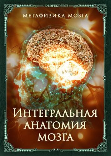 Интегральная анатомия мозга