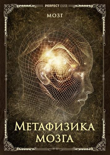 Метафизика мозга