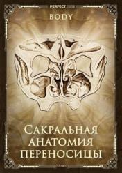 Сакральная анатомия. Переносица