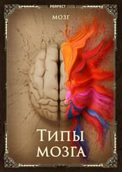 Типы мозга