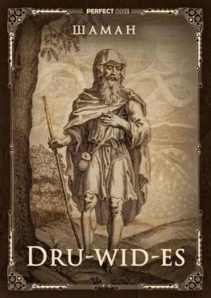 Друиды (draoidh, гаэльск.) — кельтские жрецы, «способные слышать пространство»