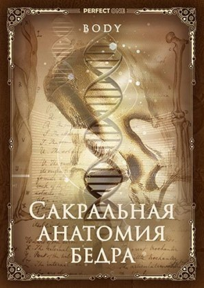 Сакральная анатомия бедра