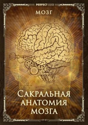 Сакральная анатомия мозга