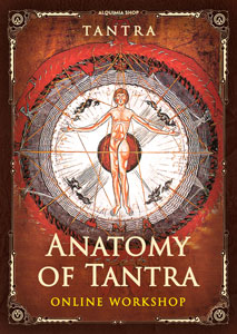 Anatomy of tantra