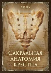 Сакральная анатомия крестца