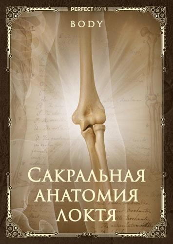 Сакральная анатомия локтя