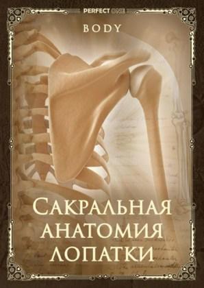 Сакральная анатомия лопатки