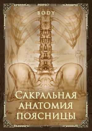 Сакральная анатомия поясницы