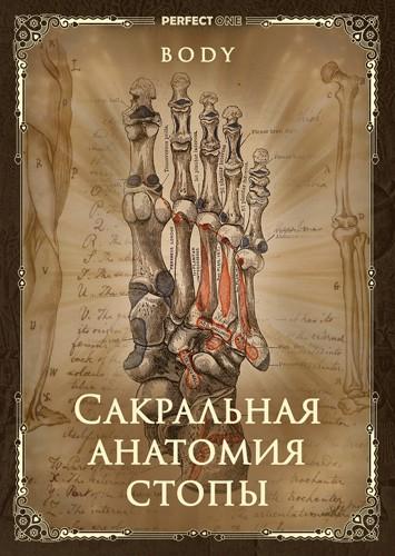 Сакральная анатомия стоп
