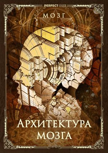 Архитектура мозга