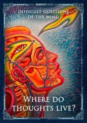 Where do thoughts live?
